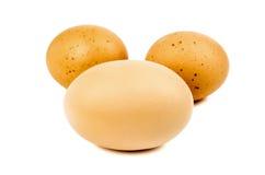 Egg. Three eggs isolated on white background Royalty Free Stock Photo