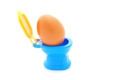 egg toilet Arkivbilder