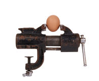 Egg trapped in the old rusty metalwork vice Royalty Free Stock Photos