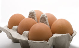 Egg tray Stock Image