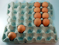 Egg Tray. Eggs on tray Stock Images