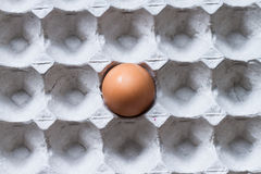Egg in tray Stock Photo