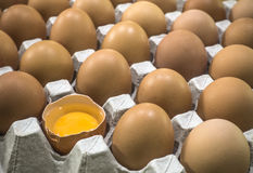 Egg tray Stock Photography