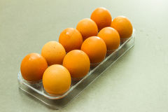 The egg on tray. Stock Photo
