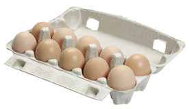 Egg tray isolated Stock Photos