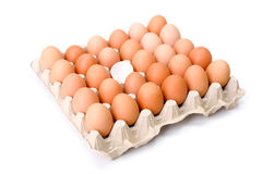 Egg tray with one broken egg shell in the middle Stock Photography