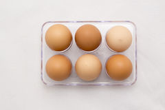 Egg Tray, Six Eggs, Full Number royalty free stock images