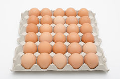 Egg in tray Stock Photos