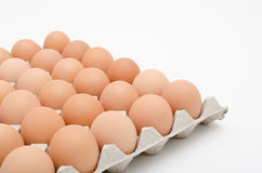 Egg in tray Royalty Free Stock Photo