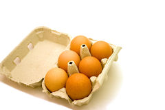 Egg tray1. Half a dozen brown eggs in cardboard tray isolated over white Stock Images