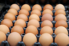 Egg trays at the market Stock Photo