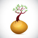 Egg and tree illustration design Royalty Free Stock Photography