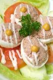 Egg tuna salad Stock Photography