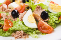Egg and tuna salad Royalty Free Stock Photos