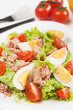Egg and tuna salad Stock Images