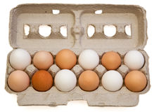 Egg Variety Stock Photos