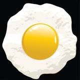 Egg Vector Stock Photography