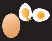 Egg. The egg vector on black background Royalty Free Stock Photos