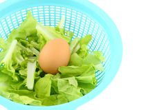 Egg on vegetable basket Royalty Free Stock Photos