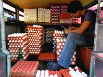 Egg Vendor Stock Image