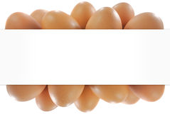 Egg in white backgrond Stock Photos