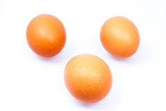 Egg. On a white background Royalty Free Stock Images
