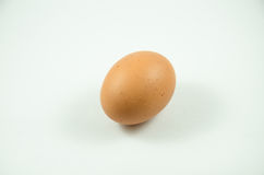Egg. With With White BackGround Royalty Free Stock Photography