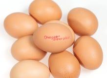 Egg white background Stock Photos