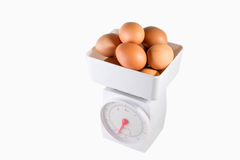 Egg in white box Royalty Free Stock Image