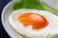 Egg. On white disk with vegetable stock image
