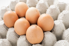 Egg on white isolated background.food health. Stock Photography
