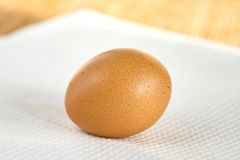 Egg on white napkin Royalty Free Stock Image