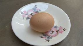 Egg on white plate royalty free stock photo