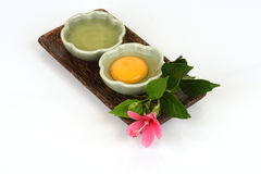 Egg white and yolk. Egg white and yolk natural raw materials with medicinal properties stock images