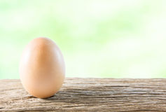 Egg on wooden Stock Images