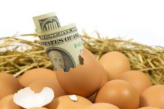 Egg Worth One Hundred Dollars Royalty Free Stock Photo