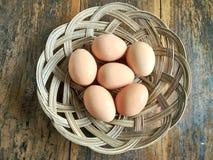 Egg at the woven Stock Photos