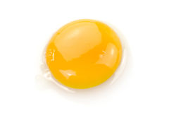 Egg yolk. A fresh egg yolk on a white background Stock Images