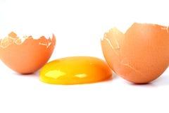 Egg Yolk. Yellow Egg Yolk Between Cracked Shell Isolated On White Stock Photos