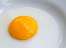 Egg yolk . Stock Image