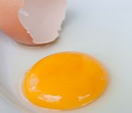Egg yolk . Stock Photos