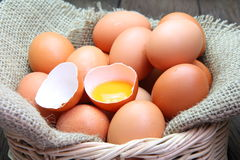 Egg yolk with chicken eggs Stock Images