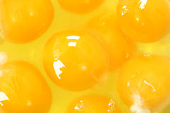 Egg Yolk Close Up Background Stock Photo