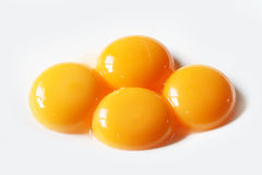 Egg yolk close up Stock Photography