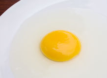 Egg yolk closeup Royalty Free Stock Photography