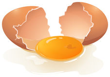 Egg yolk. Cracking egg with egg yolk in the middle Royalty Free Stock Photos