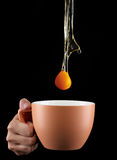 Egg Yolk dripping in to cup. Stock Images