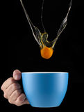 Egg Yolk dripping in to cup. Royalty Free Stock Photos