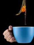 Egg Yolk dripping in to cup. Royalty Free Stock Photo