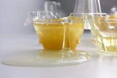 Egg yolk. Photo for your design. Raw egg. Inside stock image